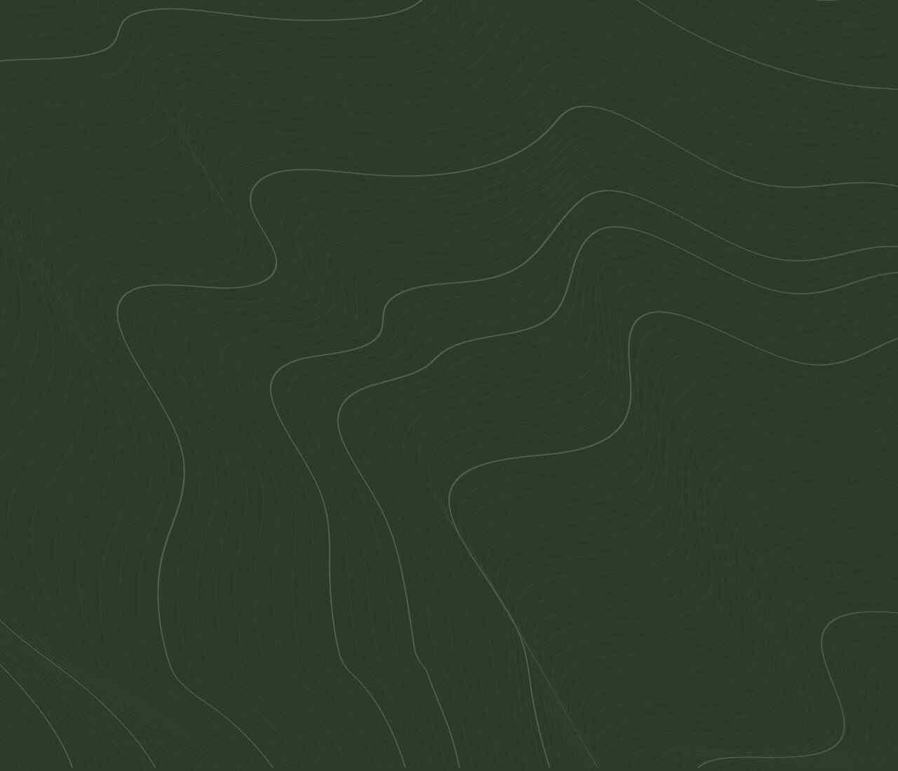 https://huisveluwehuren.nl/wp-content/uploads/2020/02/green-background-1280x1100.jpg