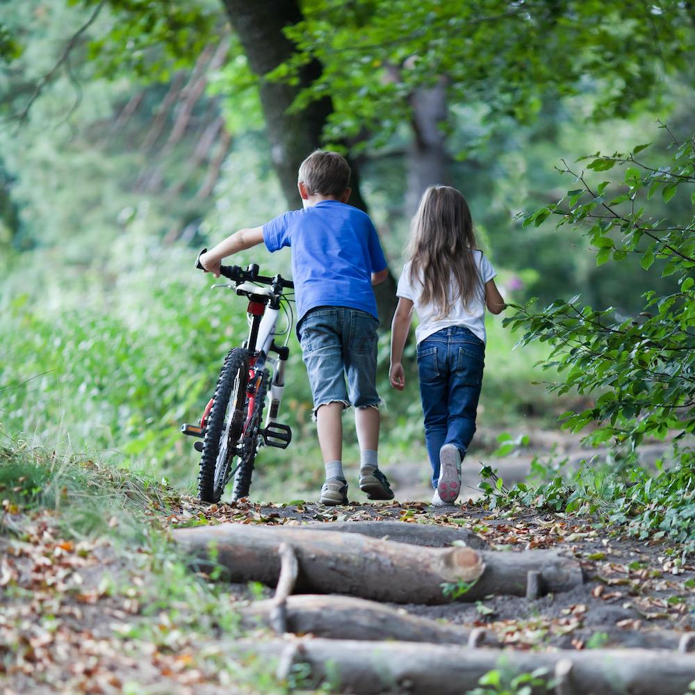 Children walking  in forest.  Llittle boy walking with his bike high up